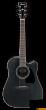 Ibanez AW-84 CE WK - gitara elektroakustyczna - zdjęcie 1